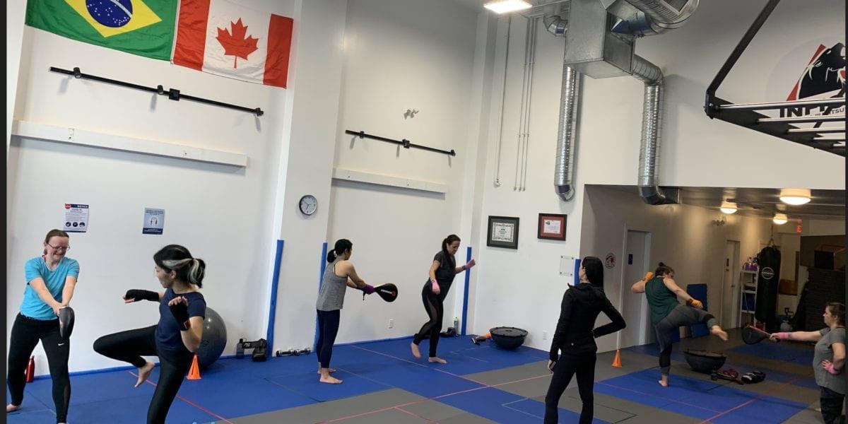 Adults Fitness - BVJJ Cardio Kickboxing Class